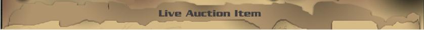 liveauction_divider